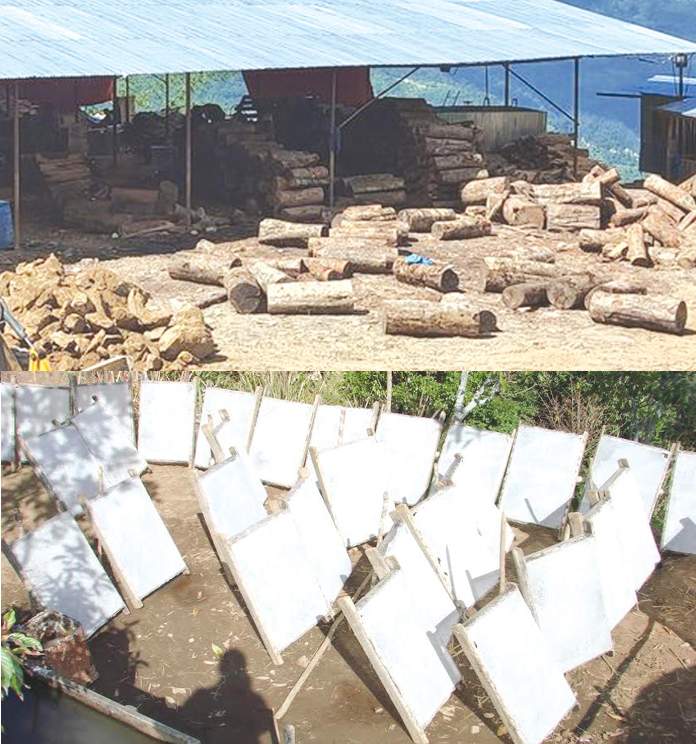 वैदेशीक रोजगार पश्चात् सिकेका सीपलाई आफ्नै गाउँमा उपयोग गर्दै युवाहरु